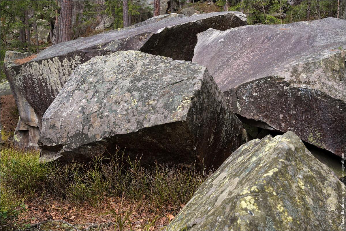 семейный отдых в карпатах